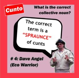 Dave Angel taking no shit on the collective noun question