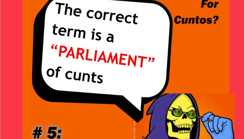 Skeletor's collective noun for Cunts